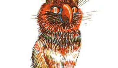 pappagatto